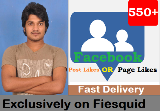 add 550 Real Facebook Photo, post, video Likes