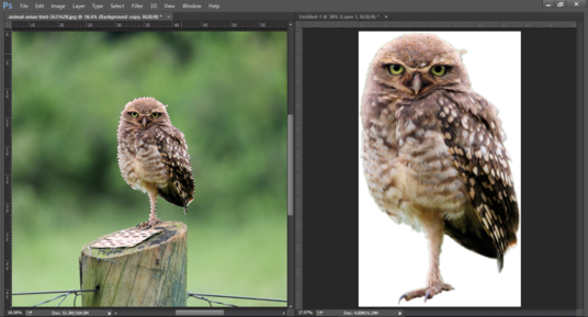 do photoshop editing of 20 photos for background removal