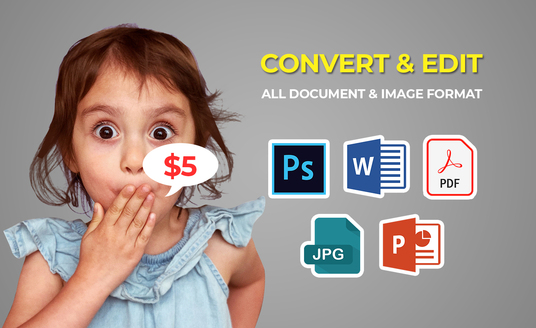 I will  edit, change, or convert  your  document