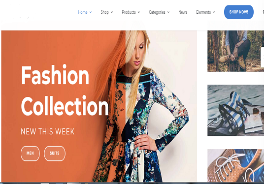 I will create an eCommerce website, woo-commerce website, an online store