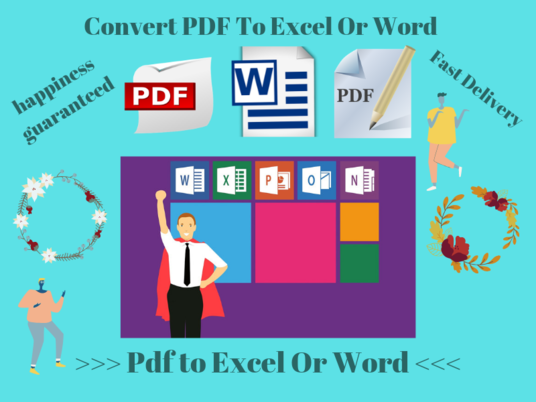 I will Manually Convert Pdf To Excel Or Word Fast