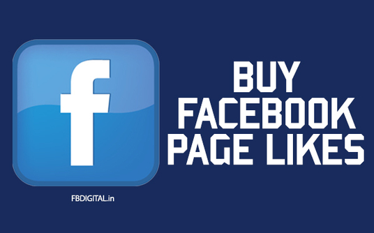 I will add 1500  likes to your facebook page
