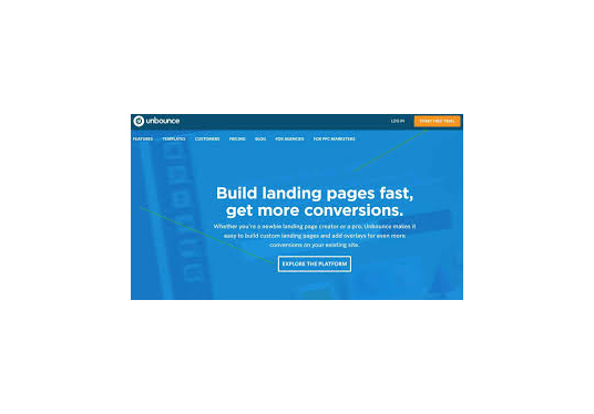 cccccc-create a professional wordpress landing page