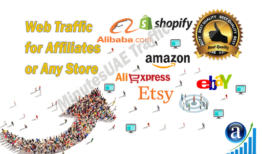 I will send web traffic for Affiliates, Amazon, eBay, Alibaba, AliExpress, Etsy or Shopify Store