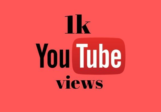 I will provide 1000+ Real YouTube Views