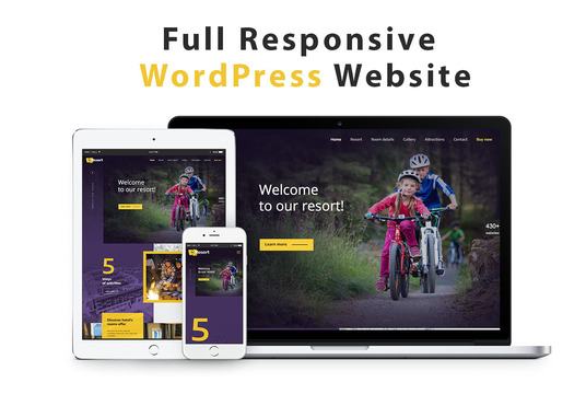 I will build a premium wordpress website for your business