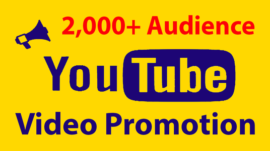 Provide you 2000 youtube video views