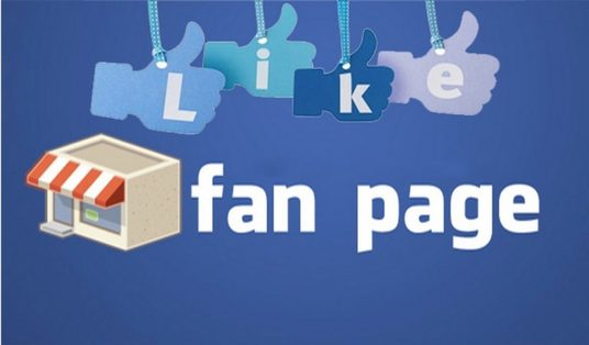 I will 500 Real and Non Drop Facebook Fan Page Likes