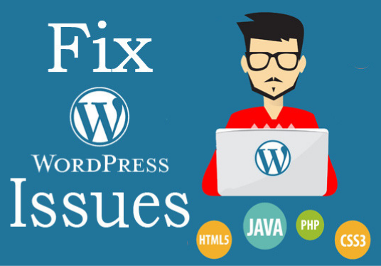 I will Fix Wordpress Website Error Issue