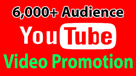 I will Provide you 6000 youtube video views