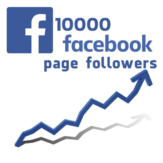 I will Add Over 500+ High Quality Facebook Profile Followers or Subscribers