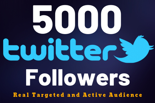 I will Add Real And Active 2000+ Twitter Followers