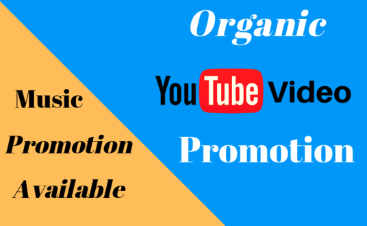 I will give you 1000 real youtube video views
