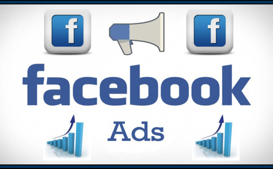 I will Setup And Manage Your Facebook Ads Campaign, Instagram Ads