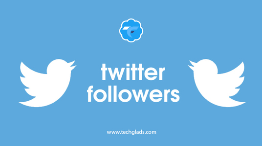 I will provide 1000  followers to your twitter profile