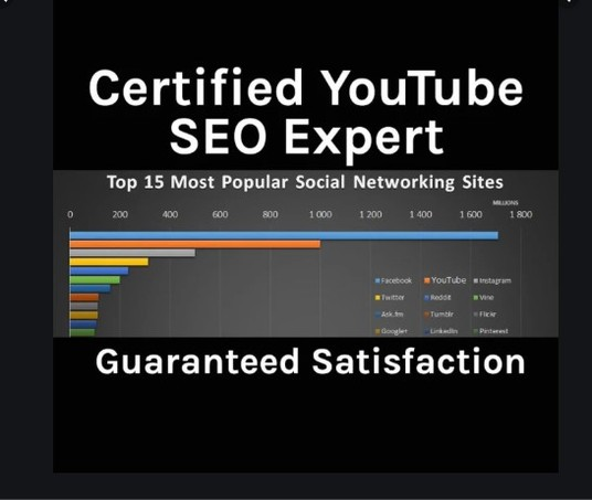 I will Do YouTube Video Optimization to Rank Your Video on the First page As An Expert