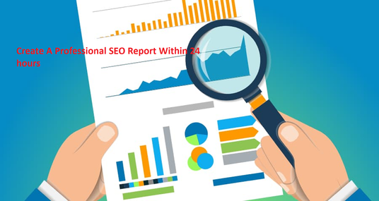 Create A Professional SEO Report Within 24 hours