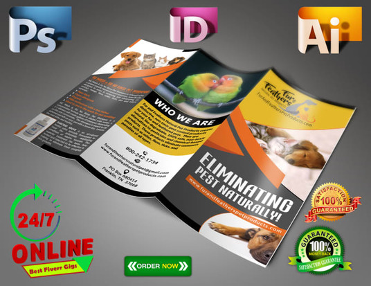I will Design Tri Fold Brochure Design For You