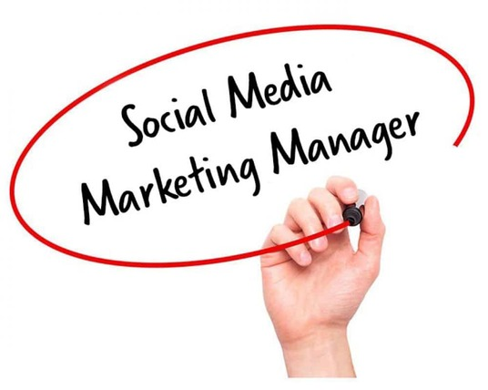 I will be your social media marketing manager for all platforms