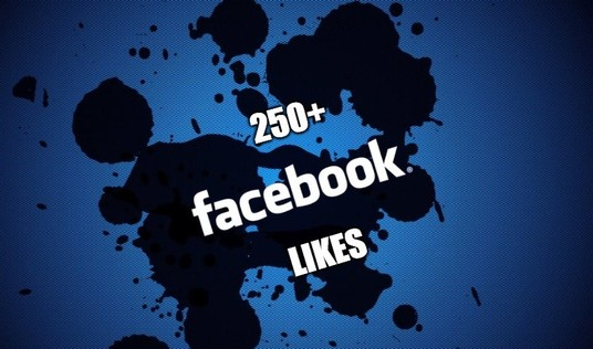 I will Provide 250+ Real Facebook Fan Page Likes