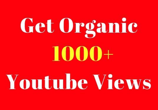 I will I  do fast Organic YouTube Video Promotion