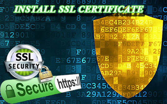 I will install WordPress AND SSL Certificate on your domain