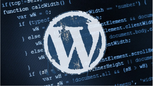 I will install  WordPress and Customize themes