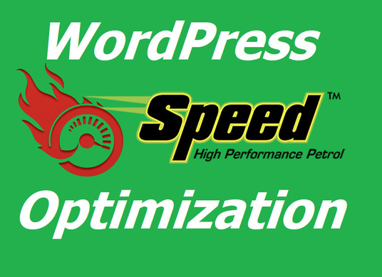 I will speed up the WordPress website and improve GTmetrix page speed score