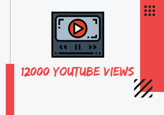 I will provide you with organic 12000+ you tube views