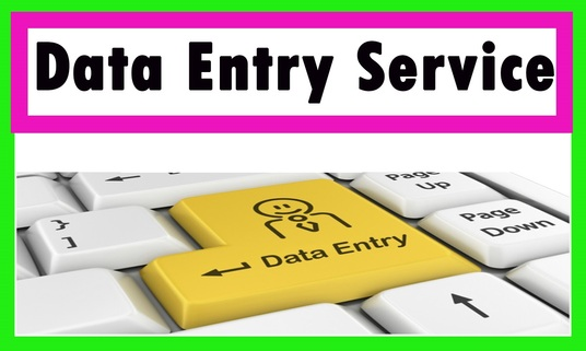 I will provide best service in Data Entry