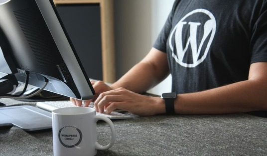 I will fix wordpress errors, bugs and mistakes