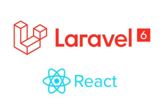 I will develop web application with laravel and react js