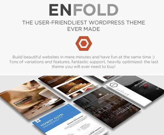 I will design, fix or customize your website with enfold theme