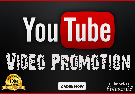 I will do organic youtube video promotion to real audience