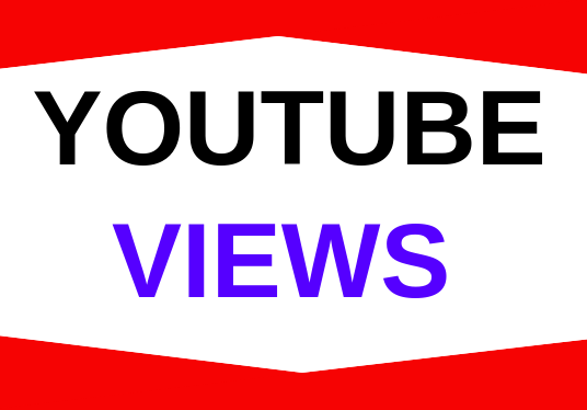 I will Provide 3000 Views To Your Youtube Video