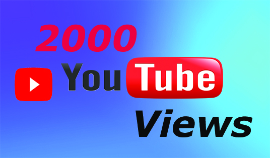 I will give you 2000  youtube views in your video