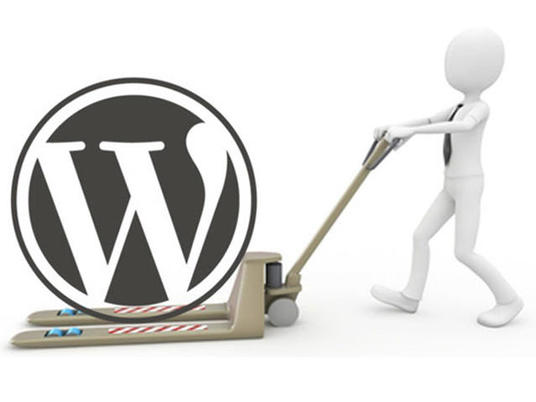I will backup and transfer your wordpress website