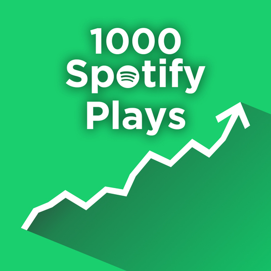 I will add 1000 Spotify plays