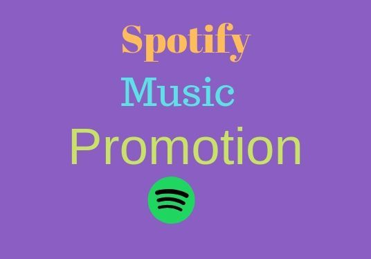 I will do real organic 1000  Spotify music promotion