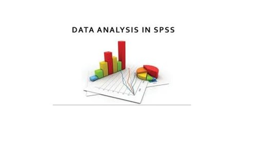 I will analyze your data using SPSS and Excel
