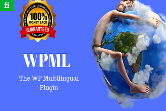 I will install WPML multilingual WordPress Plugin