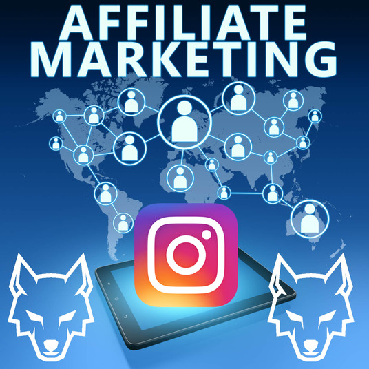 I will do viral affiliate link marketing, affiliate promotion, amazon, clickbank, and other affil