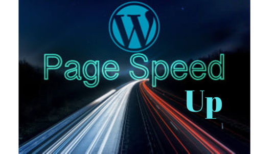 I will do WordPress Website Speed Optimization