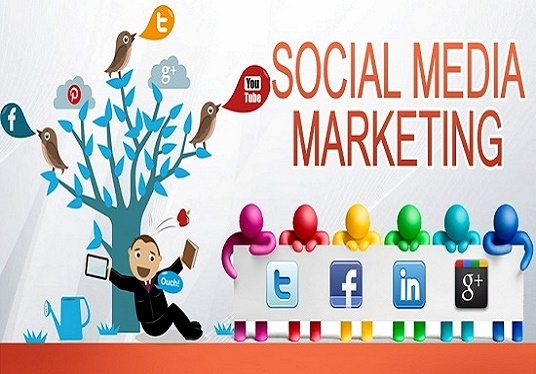 promote your brand, business using social media
