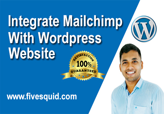 I will set up mailchimp with wordpress website