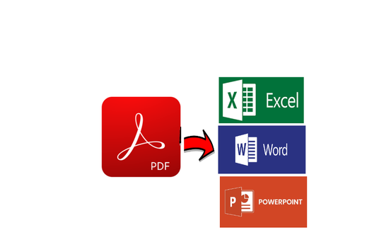 I will Convert PDF to Excel or Word within 24 hours