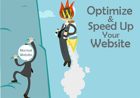 I will optimize or speed up your WordPress website