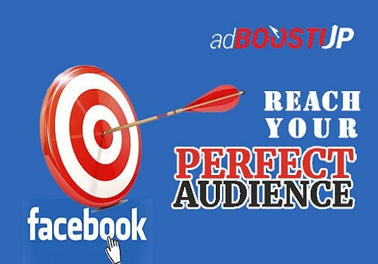 I will setup audience for your Facebook ads campaign