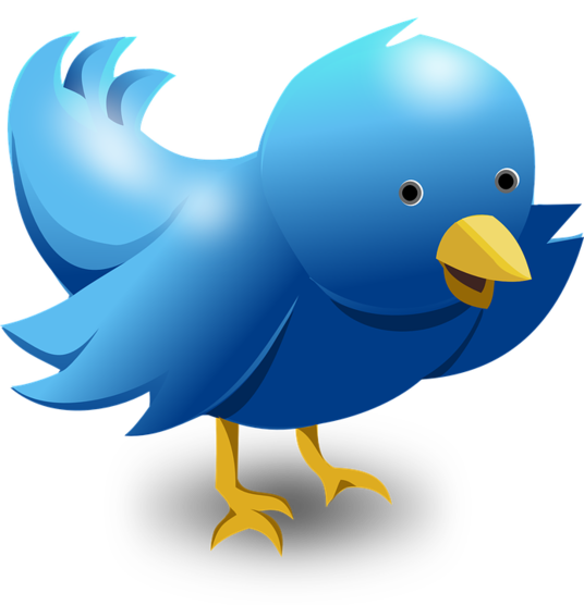 I will deliver 100 Twitter Followers Life Time Guaranteed