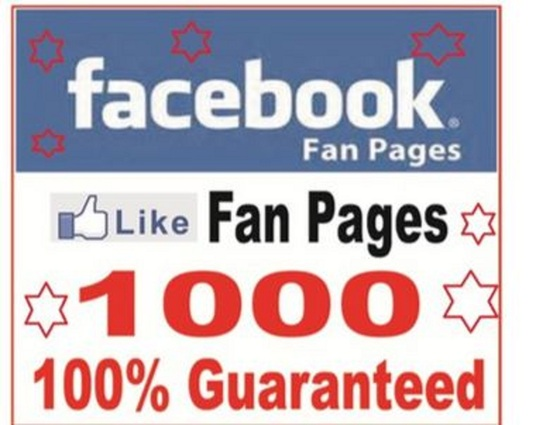 I will Provide you 1,000+ Active Facebook Fan Page likes